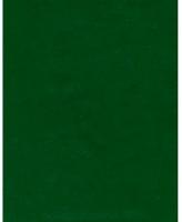 Тетрадь 48л. (клетка) BG б/в обл. 8731 зеленая