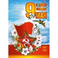 Плакат  9 Мая С Днем Победы 297*420