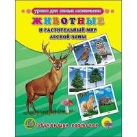 Обучающие карточки.Животные и растительный мир лесной зоны