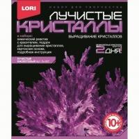 Набор ДТ Лучистые кристаллы Фиолетовый кристалл